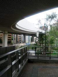 shibuyagawa.jpg