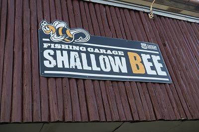 SHALLOW BEE (シャロービー)