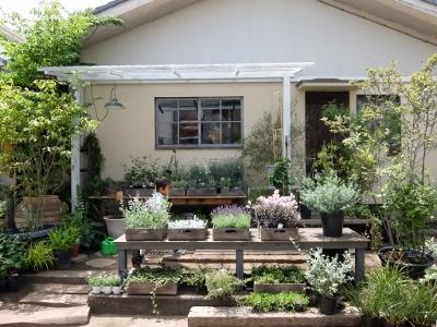 植物とアンティークの奥深い世界観に浸れる 「花屋 草原舎」