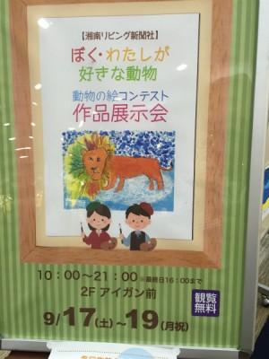 湘南リビング主催の「第19回動物の絵コンテスト」の展覧会に行ってきました!