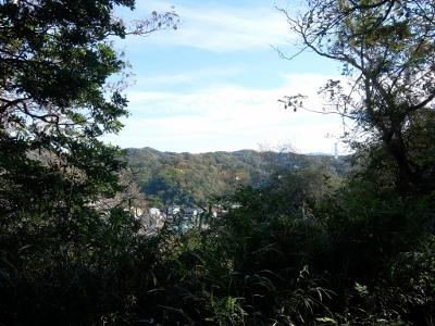 自然の山道を行く!鎌倉の祇園山ハイキングコース