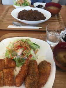 MIXフライ定食とヒレカツ牛すじカレー