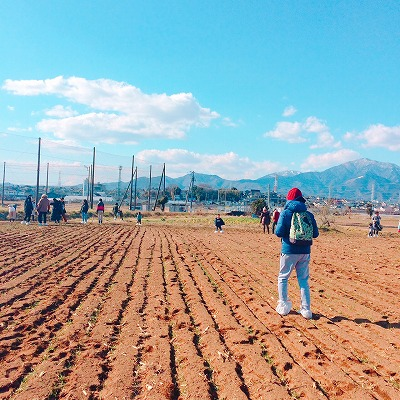 「麦踏み塾」の湘南小麦畑ツアーに参加