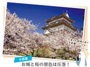小田原&箱根お花見旅へ シラセさんの休日(湘南 2018年3月17日1454号・平塚531号)