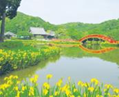 美しい浄土式庭園と金沢山頂上からの眺望を堪能 称名寺 市民の森