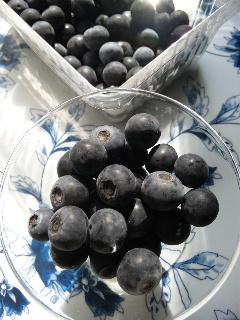 小平は日本初のブルーベリー栽培の地