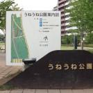 小川も流れる『うねうね公園』、子どもに大人気です