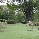 緑化フェア@昭和記念公園vol.2~緑とアートのコラボレーション