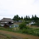 緑化フェア@昭和記念公園vol.3~「こどもの森」はワクワクがいっぱい!