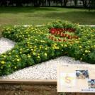 昭和記念公園で「第29回全国都市緑化フェア」開催中!