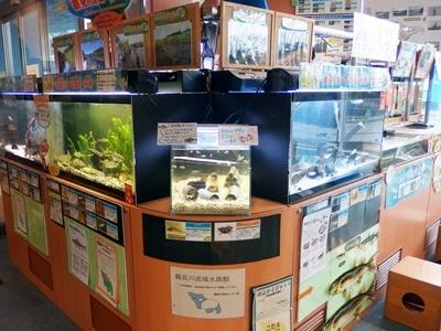 土日も開いている無料施設「鶴見川流域センター」