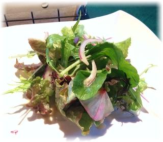 サラダは茨城県産の有機野菜たっぷりです