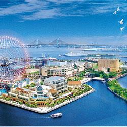 2014年横浜に新しい風
