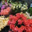 オフィス街のフラワーショップで春を発見「GLUCK floristik」