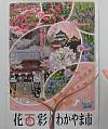 春イチバンのお花見は和歌山へ
