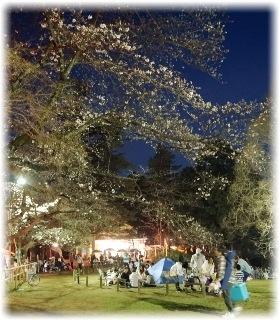 仁王門横の広場は宴会場と化してました