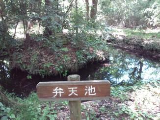 こんぶくろ池