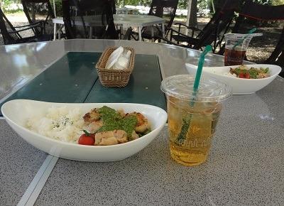 ミニドッグラン付!「昭和の森ガーデンCAFE&BBQ」