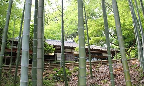 我孫子散歩Vol.3 旧村川別荘へ 夏休みの自由研究にも 少し前の歴史を訪ねて