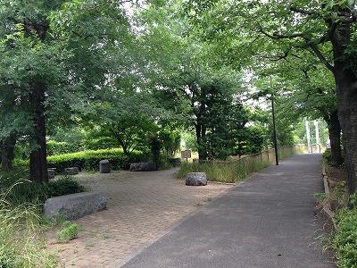 新緑の木陰が涼しい~!初夏のサイクリングロード