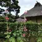 むかしの浦和の街がここに!「浦和くらしの博物館民家園」をぶらり散策