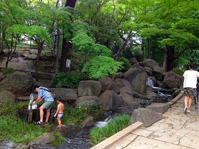 渓流ジャブジャブ!蚕糸の森公園@東高円寺