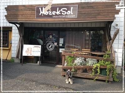 八王子ドッグカフェ・モゼクソール