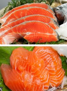 鮭とサーモン