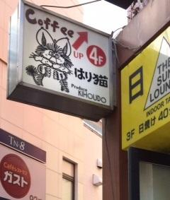はり猫11