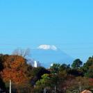 太宰治も荻窪から富士山を見ていた