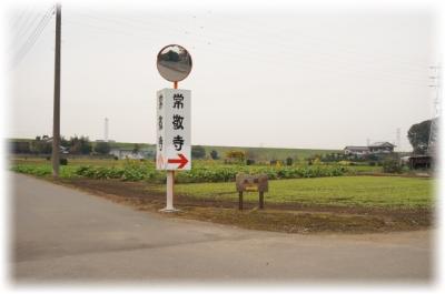 141210mizuka00001