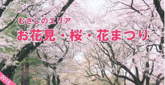 0319-hanami1