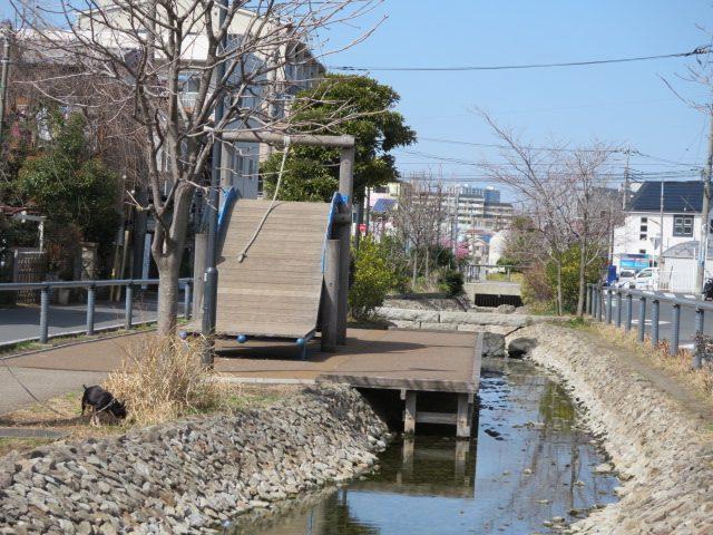 遊歩道 江川 せせらぎ