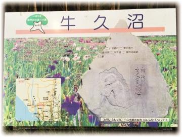 2015-0610ushiku00003