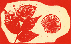 夏期子ども講座「版画でオリジナル化石をつくってみよう!」町田市立国際版画美術館