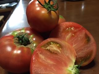 行列必至!買えればラッキー!~超有名な人気の日野トマト~