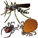 【マモルミカタ第13弾 害虫】この姿にピンと来たらご用心!
