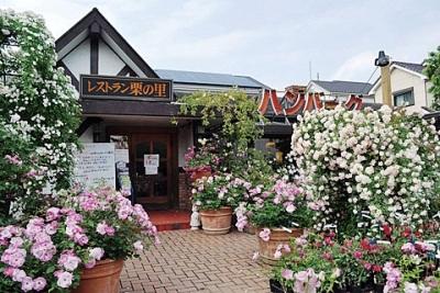 「夏バラとライトアップフェア」開催中! レストラン栗の里 厚木店