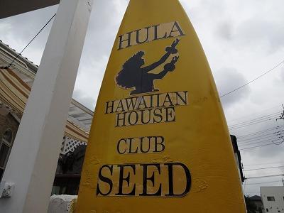大宮でハワイを感じて…「クラブシード」はフラ&ハワイアン雑貨の自宅ショップ