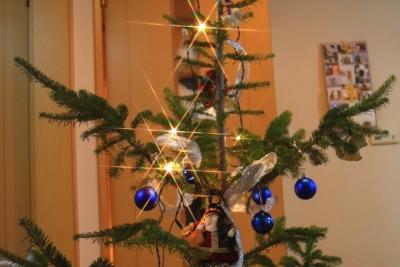 IKEAの生モミの木、実質無料!2015年の販売は19日から!