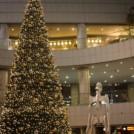 新宿◆おすすめクリスマスイルミネーションスポットまとめました!