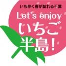 """いち早く春が訪れる千葉~Let's enjoy いちご半島! """"チーバベリー""""情報も"""