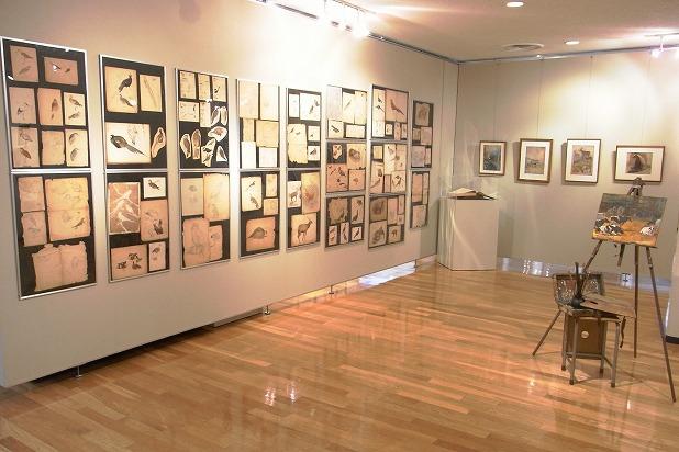 流山市生涯学習センターの「鳥を描き続けた画家・小林重三のせかい」