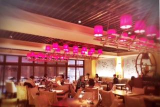 ◆ベトナム宮廷料理◆+290円で食べ放題本場のデザート◆六本木︎
