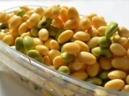 【期間限定価格】大豆を食べても効果ナシ!?ソイチェックでわかるあなたの体質