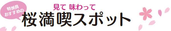 """見て、味わって""""桜満喫スポット"""" ←特派員オススメ"""