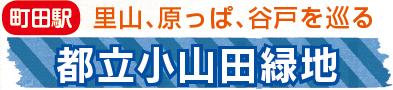 小山田緑地2