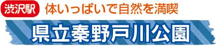 秦野戸川公園2