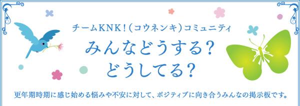 knk2016_01a