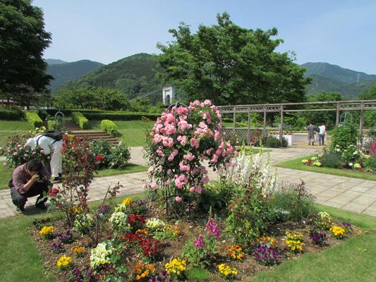 mac_togawakouen garden
